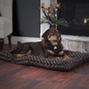 PAW Lavish Cushion Pillow Furry Pet Bed - Chocolate - Medium