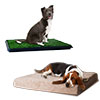 Large PAW Dog Bed and Puppy Potty Trainer Set