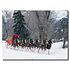 Clydesdales - Snowing in Forest - 24 x 32Canvas